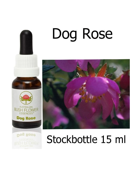 Australische Buschblüten Dog Rose Stockbottles