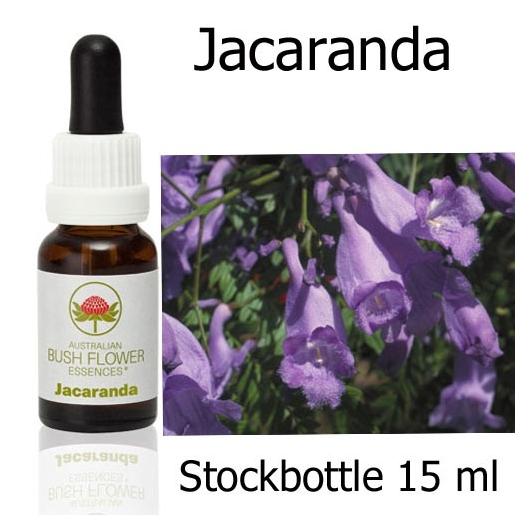 Australische Buschblüten Jacaranda Stockbottles