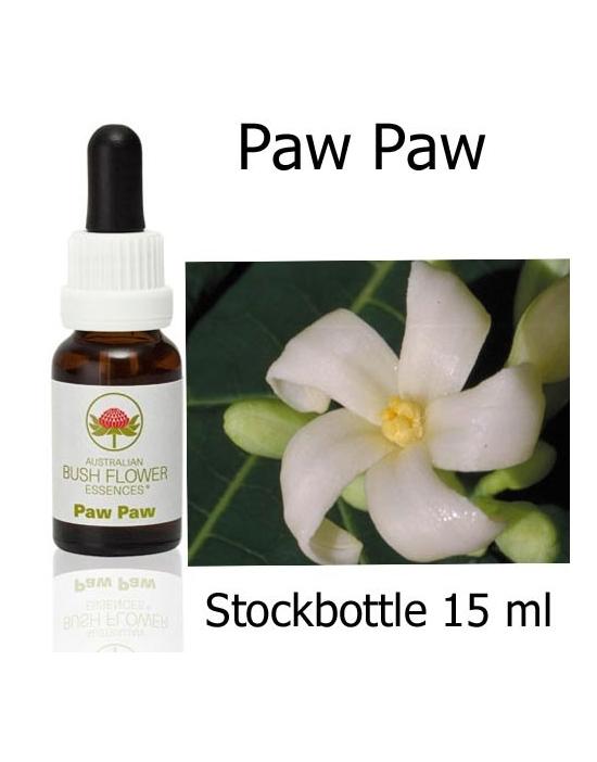 Australische Buschblüten Stockbottles Paw Paw