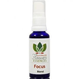 Focus Konzentration Australische Blütenessenzen Vitalsprays