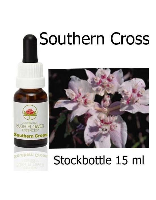 Australische Buschblüten Southern Cross