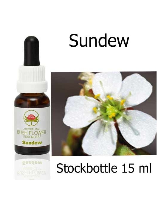 Australian Bush Flower Essences SUNDEW Stockbottles 15 ml