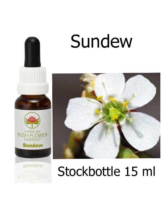 Sundew Australian Bush Flower Essences