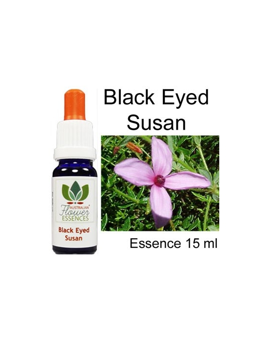 Black Eyed Susan Australian Flower Essences Love Remedies