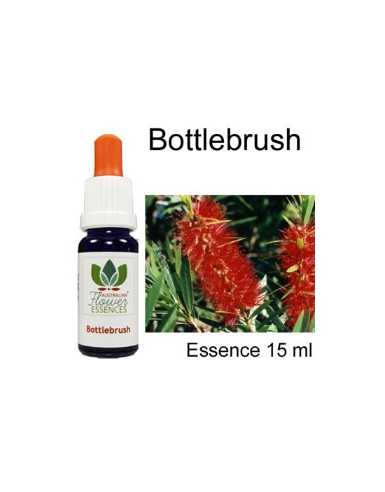 Bottlebrush Australische Blütenessenzen Love Remedies