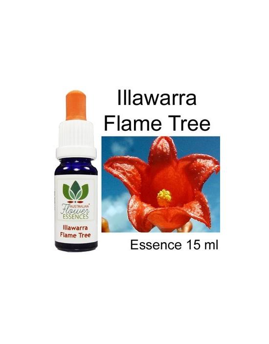 ILLAWARRA FLAME TREE  Australische Blütenessenzen Love Remedies