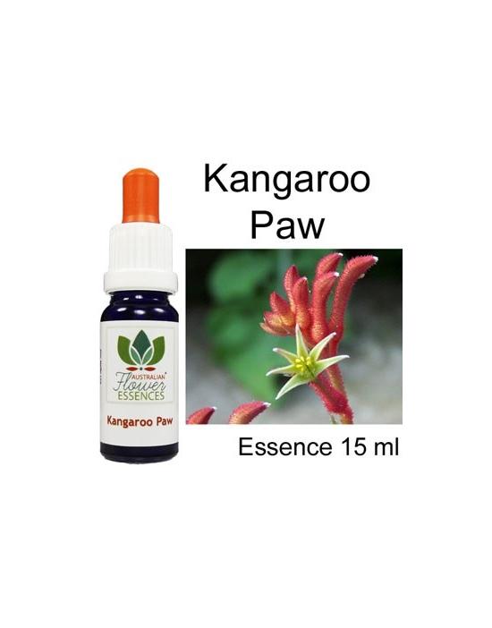 KANGAROO PAW Australische Blütenessenzen Love Remedies