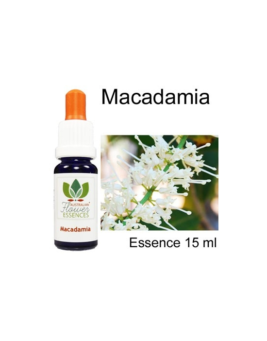 MACADAMIA  Australian Flower Essences Love Remedies