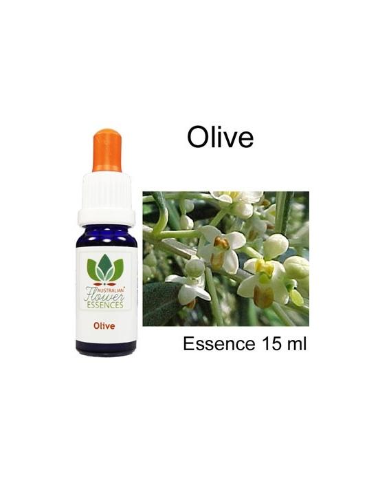 OLIVE Australische Blütenessenzen Love Remedies