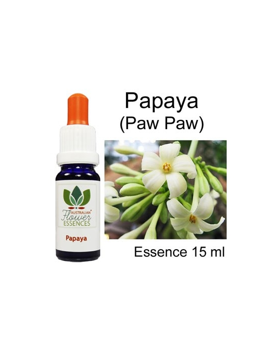 PAPAYA (PAW PAW) 15ml Australian Flower Essences fiori australiani