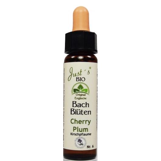 Chrerry Plum original englische Bio Bachblüten Tropfen Nr. 6 Kirschpflaume