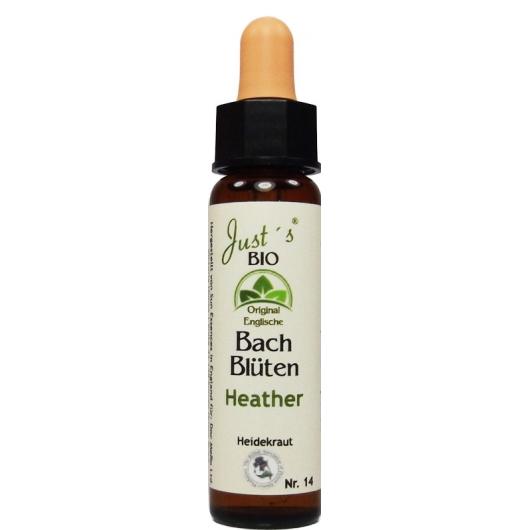 Heather original englische Bio Bachblüten Nr. 14 Heidekraut