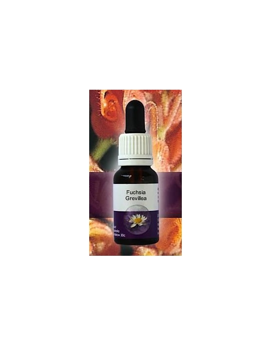 Fuchsia Grevillea Living Essences Stockbottle 15 ml Australische Bachblüten