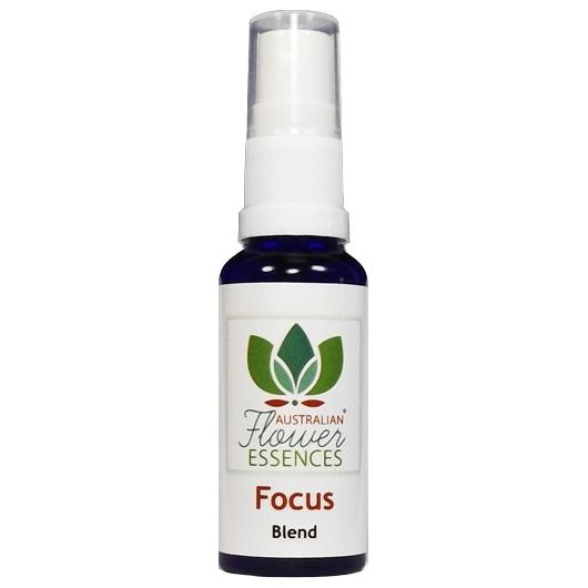 Focus Blend 30 ml Australian Flower Essences
