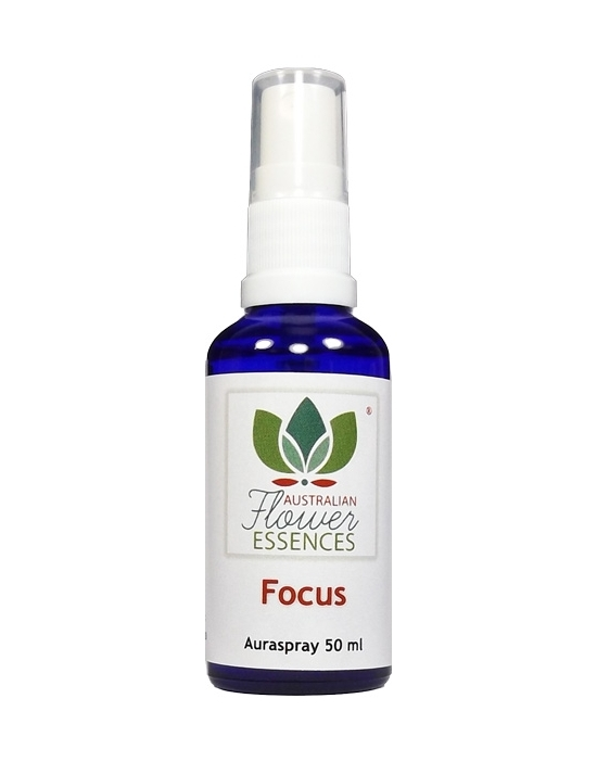 Focus Konzentration Australische Blütenessenzen Auraspray Australian Flower Essences