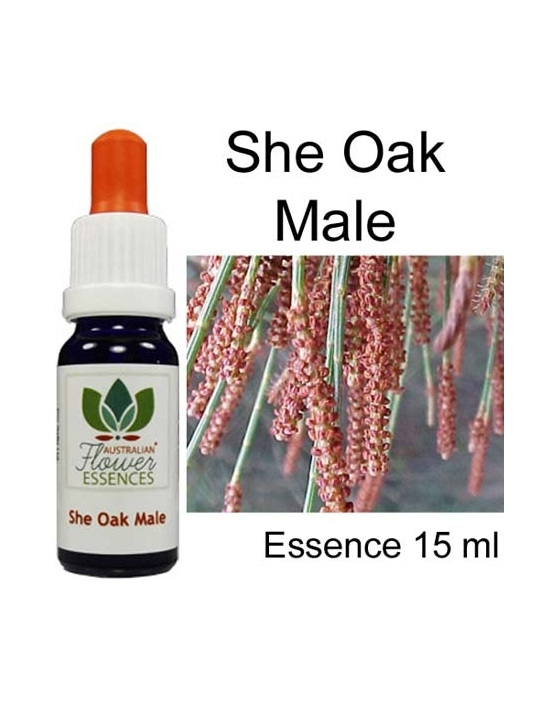 Australian Flower Essences She Oak Male 15 ml