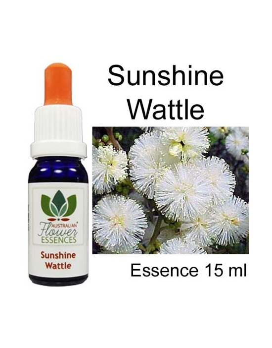 SUNSHINE WATTLE 15 ml Australian Flower Essences Buschblüten