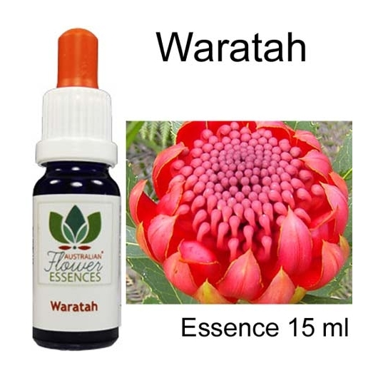 WARATAH 15 ml Australian Flower Essences Essenze australiane