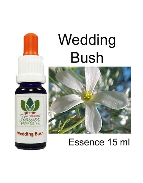 WEDDING BUSH 15 ml Australian Flower Essences Buschblüten