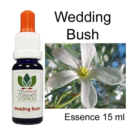 WEDDING BUSH 15 ml Australian Flower Essences Essenze australiane