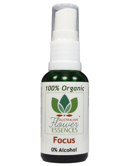 Focus 30 ml Organic Blend...
