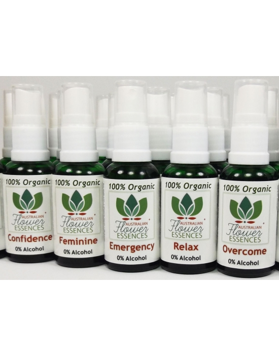 Set of all 23 Organic Blend...