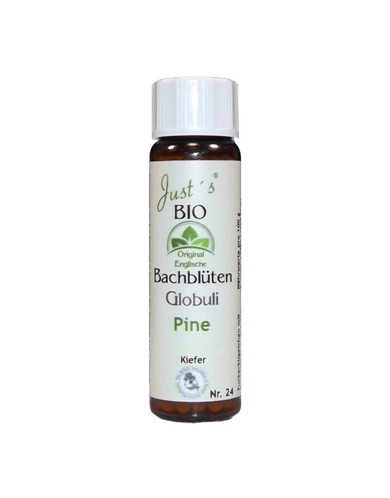 Globuli Pine Nr. 24 original englische Bio Bachblüten alkoholfrei Kiefer