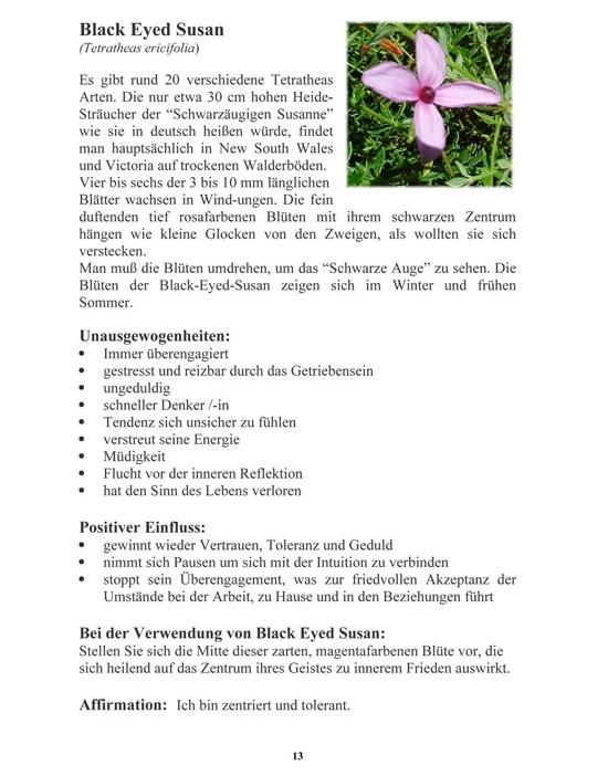 E-Book Auszug der Beschreibung der Buschblüten Black Eyed Susan.