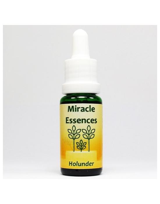 Holunder Miracle Essences Blütenessenzen