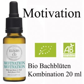 Bio Bachblüten Mischung Motivation - Tropfen 20ml