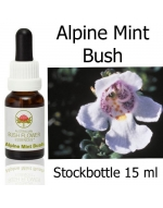 Buschblüten Stockbottles Alpine Mint Bush