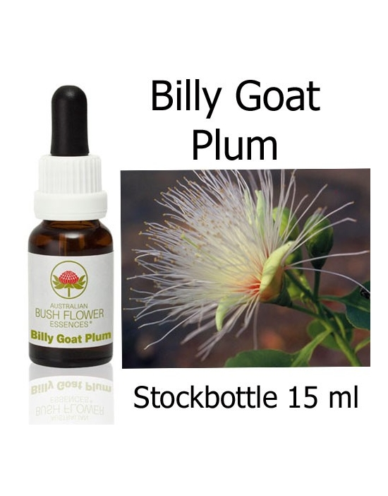 BILLY GOAT PLUM 15 ml Australian Bush Flower Essences
