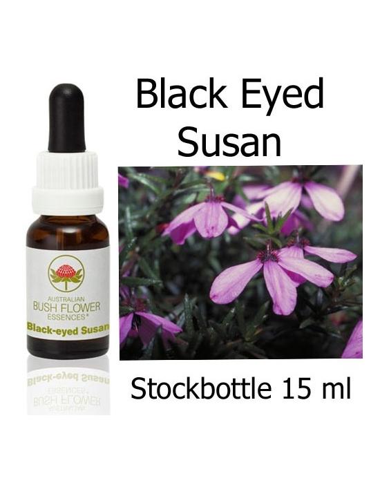 Buschblüten Black Eyed Susan Stockbottles