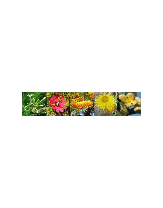 fiori SELF LOVE Aura Spray Australian Flower Essences