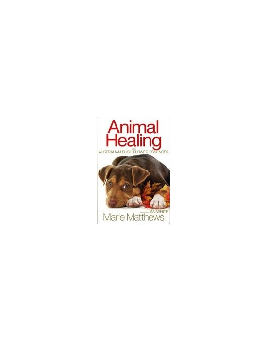 Buch Animal Healing Australische Buschblüten Essenzen  (englische Fassung)
