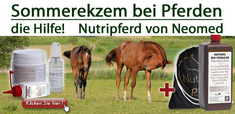 Sommerekzem Pferde Neomed Bio Stimular