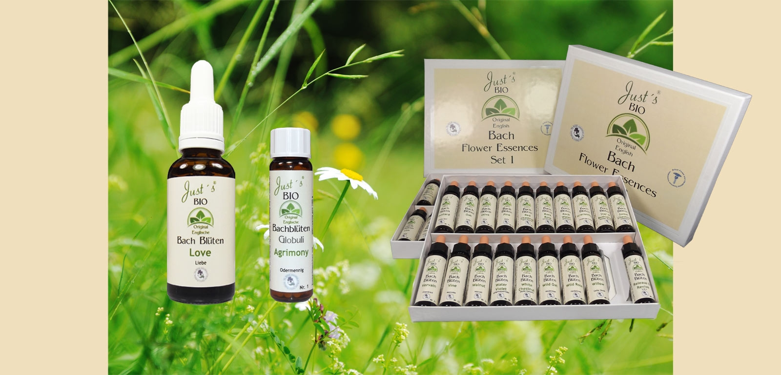 the original english organic bach flower essences since more than 20 years