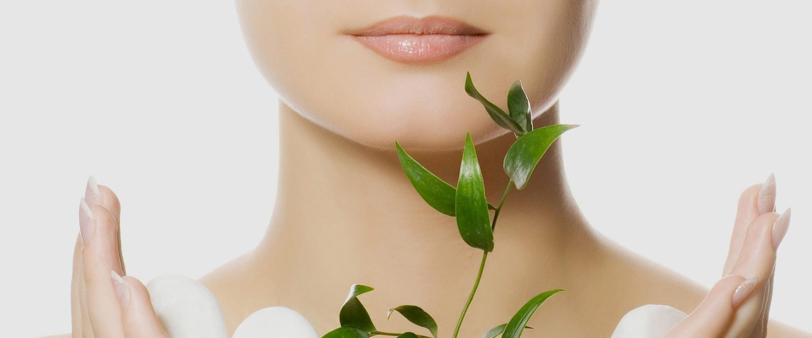 Beauty treatment for body and mind- Wellness and vital patches